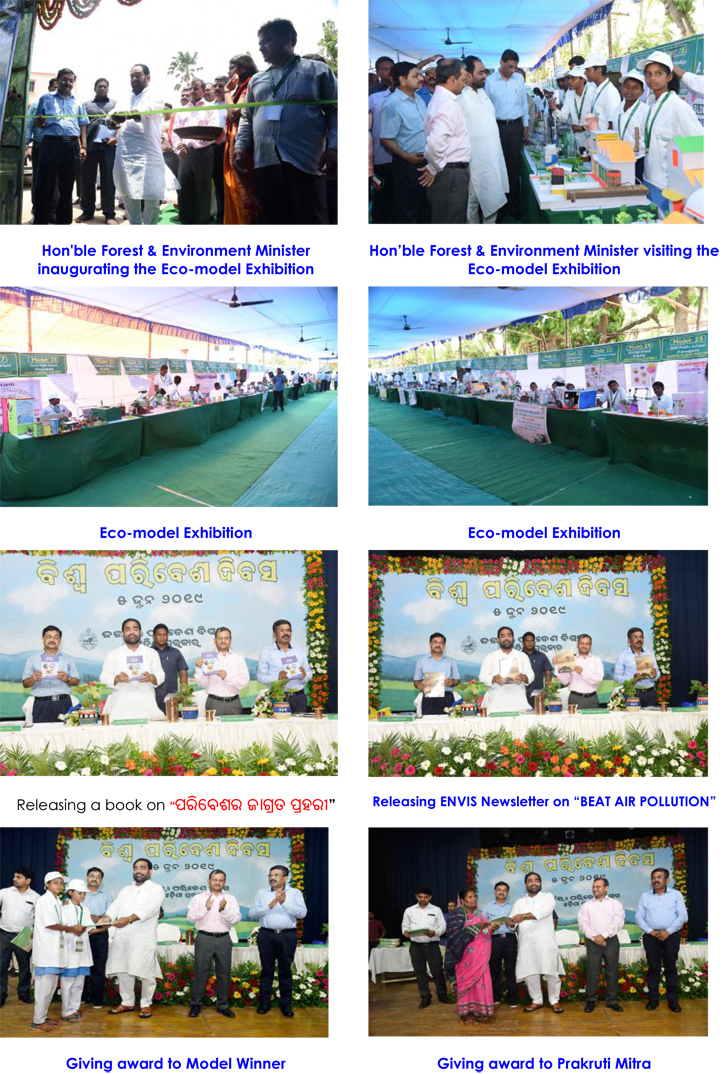 Observation of World Environment Day 2019
